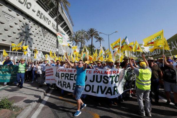 Manifestación de los agricultores andaluces en Sevilla el pasado 9 de...
