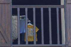 GRAFCAV6725. <HIT>AZPEITIA</HIT>.- La Ertzaintza investiga como homicidio la muerte de un niño de 4 años en un caserío de la localidad guipuzcoana de <HIT>Azpeitia</HIT>, en la que además del cadáver del menor, los agentes localizaron este martes a su madre herida tras haberse autolesionado.