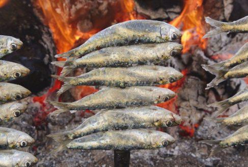 Aquí se comen las mejores sardinas de España