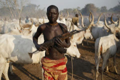 A man from <HIT>Dinka</HIT> tribe holds his AK 47 rifle in front of cows in a <HIT>Dinka</HIT> cattle herders camp near Rumbek, capital of the Lakes State in central South Sudan December 14, 2013. Picture taken December 14, 2013. REUTERS/Goran Tomasevic (SOUTH SUDAN - Tags: SOCIETY ANIMALS TPX IMAGES OF THE DAY) - GM1E9CN1LYY01