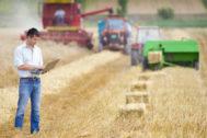 Un agricultor andaluz utiliza las últimas tecnologías en periodos de recolección.