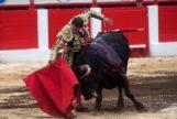 Antonio Ferrera,  a punto para matar 6 toros en otoño