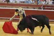 Largo derechazo de El Cid a 'Rebaja' de Cuadri, premiado con la vuelta al ruedo.