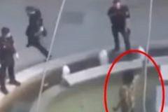 Un policía se abalanza sobre un hombre que blandía un machete para reducirlo