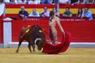 El torero Borja Collado en un festejo el pasado junio.