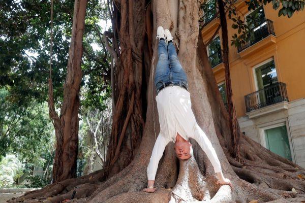 Toni Cantó, ensaya una posición de yoga en uno de los ficus del patio de las Cortes Valencianas.