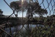 Balsa de riego ilegal construida cerca de alguno de los 77 pozos ilegales.
