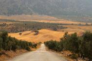 Carretera de acceso al Parque Natural de la Sierra de las Nieves.