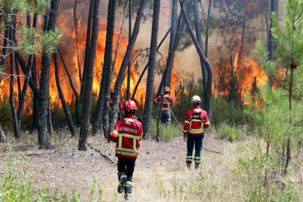 -FOTODELDIA- EPA3000. <HIT>MACAO</HIT> (PORTUGAL), 22/07/2019.-...