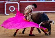 Pablo Aguado remata Linares al alza