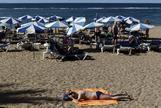 Las palmas de Gran Canaria en verano.