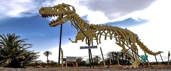El Otro Trafico De Marruecos Huesos De Dinosaurios A Cinco Euros Cronica Hoy, en animales salvajes, hablaremos del fascinante mundo, que envuelve a los descubrimientos fósiles, de algunos de los dinosaurios más increíbles. de marruecos huesos de dinosaurios