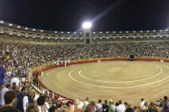 Los toros regresan a Palma con 12.000 personas  al grito de 'libertad'