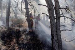 Bomberos trabajan en la extinción del último incendio de Madrid.