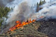 Vista del incendio declarado en Artenara, en el oeste de Gran Canaria.