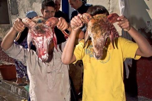 Activistas árabes contra la gran matanza del cordero
