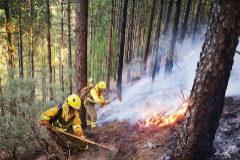 Logran contener el incendio pero   el viento podría dificultar la extinción