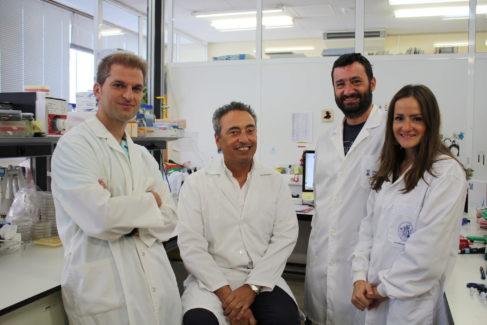 El investigador Carlos Martín, sentado, junto a los investigadores Jesús Gonzalo (izqda.), Nacho Aguiló y Dessislava Marinova.