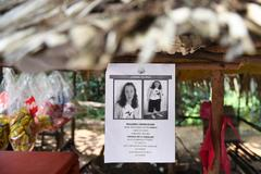 Cartel de la menor irlandesa desaparecida en Malasia.