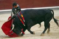 Extraordinaria y muy torera trincherilla de Juan Ortega, este jueves en Las Ventas.