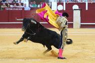 Saltillera de David de Miranda al tercer toro de La Palmosilla, este domingo en La Malagueta.
