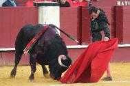 Enfrontilado natural de Juan Ortega al tercer toro de Puerto de San Lorenzo, este martes, en La Malagueta.