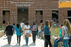 Jóvenes universitarios a las puertas de la biblioteca de Tarongers en Valencia.