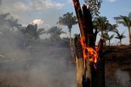 Una imagen del incendio en el Amazonas