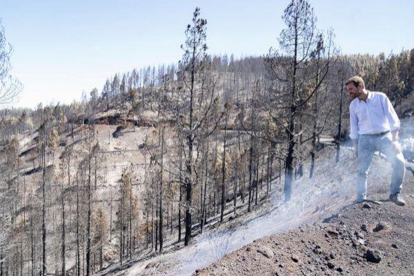 El presidente del PP, Pablo Casado, visita las zonas del incendio de Gran Canaria.