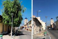 Aspecto que presenta la avenida Presidente Adolfo Suarez de la Daya Vieja, antes y después del talado masivo.