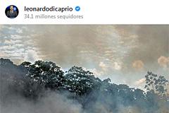 Fotos antiguas, tomadas en otro país... Las meteduras de pata de los famosos al llorar por el Amazonas