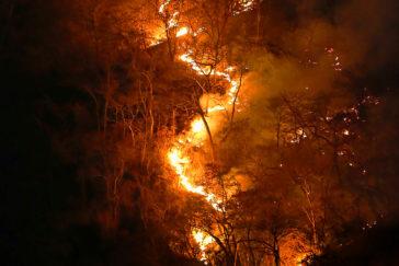 Qué hay tras los incendios que podrían alterar el clima mundial