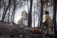 Un bombero en la zona afectada por el incendio en el término de Almonaster la Real.
