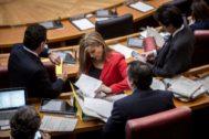 La secretaria general del PPCV, Eva Ortiz, revisa unos documentos en el hemiciclo de las Cortes.