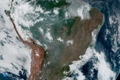 La ONU expresa su alarma por los incendios en el Amazonas