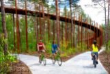 Pasear en bici entre los árboles a 10 metros de altura: ¿quién se atreve?