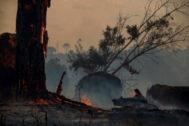 Fuego en Altamira, en el Amazonas brasileño.