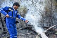 El presidente de Bolivia, Evo Morales, participa en las tareas de extinción de los incendios en el Amazonas.