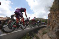 GRAF2700. LINARES DE MORA (TERUEL).- El pelotón durante la sexta etapa de la <HIT>Vuelta</HIT> a España 2019, con salida en la localidad turolense de Mora de Rubielos y meta en la castellonense de Ares del Maestrat, con un recorrido de 198,9 kilómetros.