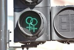 La homosexualidad depende de múltiples influencias genéticas y ambientales