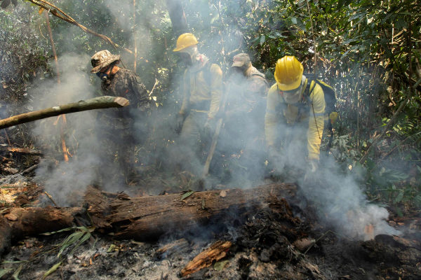 Resultado de imagen para incendio del amazonas