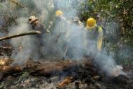 AME1037. PORTO VELHO (BRASIL).- Bomberos, brigadistas y soldados combaten varios focos de incendios en la selva amazónica este miércoles, cerca de Porto Velho (Brasil). La región amazónica brasileña sufre los peores incendios forestales de los últimos años, achacados en gran parte a la deforestación, y con una creciente presión internacional que demanda la protección de esta región. El Gobierno brasileño, que se demoró algunos días para reaccionar a la crisis desatada por los fuegos, comenzó a actuar con firmeza el pasado fin de semana y ha desplegado a unos 40.000 militares en la región amazónica.