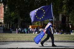 Un manifestante camina con la bandera de la UE.