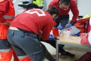 Voluntarios de Cruz Roja Alicante atienden a una persona migrante.