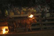 Un festejo de toro embolado.