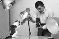 El fotógrafo, en su estudio con uno de sus modelos felinos.