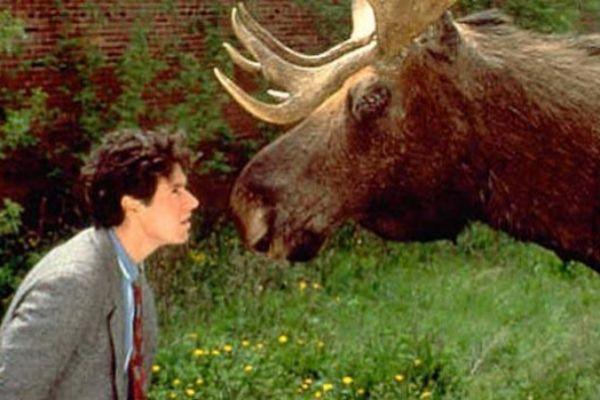 Imagen de la serie 'Doctor en Alaska'.
