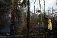 Profesionales durante las labores de extinción de los fuegos en el Amazonas.