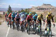 GRAF169. ATIENZA (GUADALAJARA).- El pelotón este miércoles durante la décimo séptima etapa de la <HIT>Vuelta</HIT> a <HIT>España</HIT> 2019, carrera con salida en la localidad de burgalesa de Aranda de Duero y meta en Guadalajara, con un recorrido de 219,6 kilómetros.