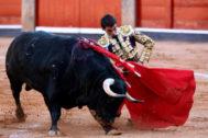 Muletazo genuflexo de López Chaves  a uno de Adelaida, este jueves en La Glorieta.